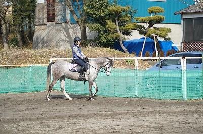 人と馬の安心関係