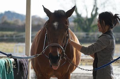 馬の気持ちと会話しよう
