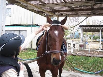 馬は性格も健康も人しだい