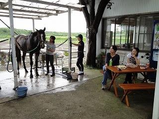 乗馬クラブに新しくテーブルベンチ