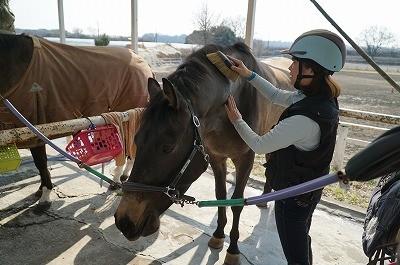 馬が喜ぶ乗馬