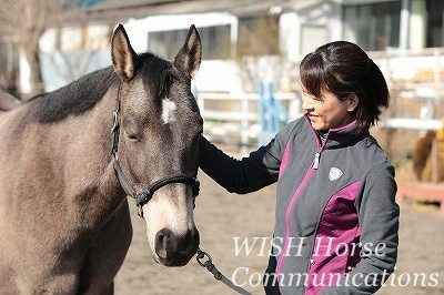 笑顔の乗馬