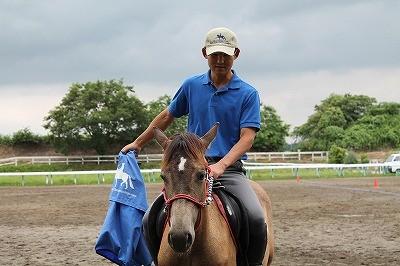 馬のパッティング