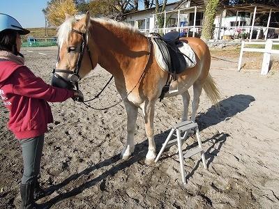 馬に乗る時の台の向きは