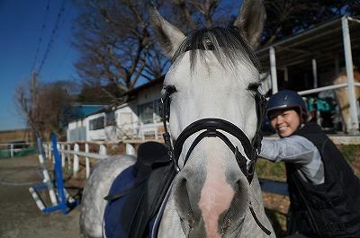 馬が喜ぶ乗馬を