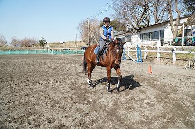 馬に乗るということは馬の気持ちとやりとりするということ