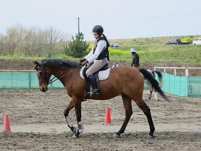 オリンピック乗馬