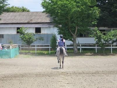 きれいな乗馬姿勢