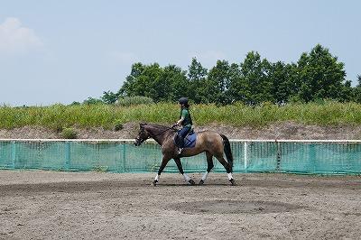 柔らかく馬に集中し続ける気持ち