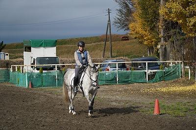 参加する乗馬