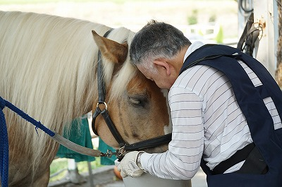 馬との絆をつくるにはテクニックじゃない