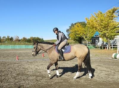 素晴らしい秋の乗馬
