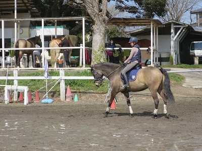 乗馬は集中力