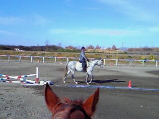 青空に白い馬