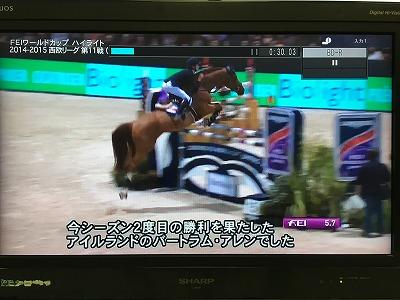 馬はアスリート