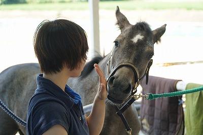 馬は周りの人次第
