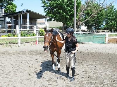 馬との心地良い関係