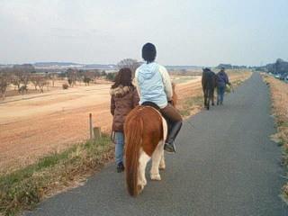 馬と土手を散歩