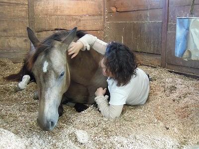 ふかふかベッドで馬と寄り添う