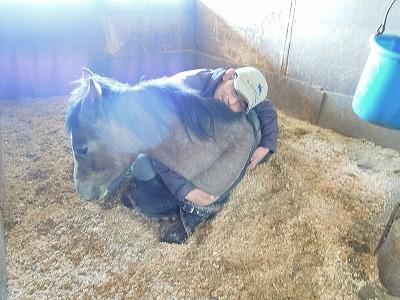 馬と寝てみた♪