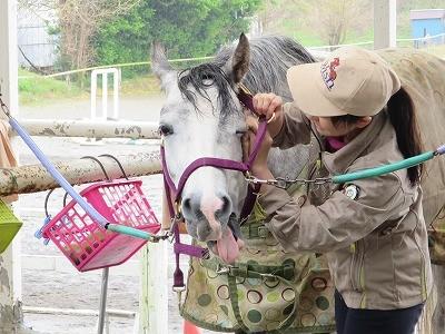 馬が喜ぶことが私達の幸せ