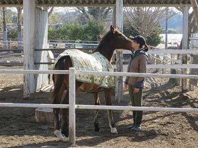 馬と寄り添う