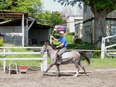 こどもの日を乗馬で体験