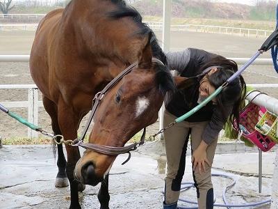 楽しい乗馬を!