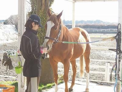 楽しい馬とのナイショの話