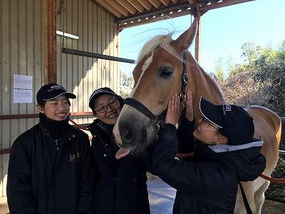 私達にとって馬が喜んでいるかが大事
