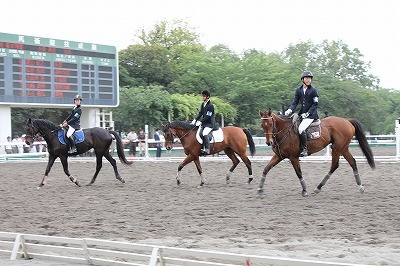 関東高等学校馬術選手権大会