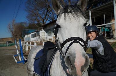 馬とアイコンタクトしよう!