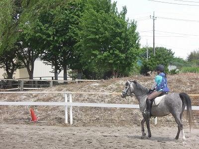 馬に乗っている実感