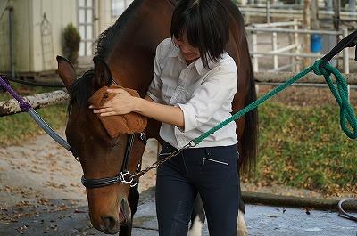 馬も絶賛の手入れ方法