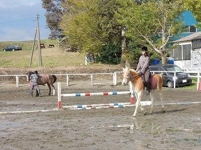 自分に合う馬で練習しましょう