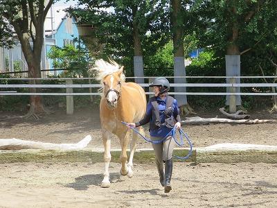 愛馬と遊ぶ