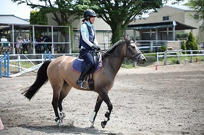 乗馬フィジカルトレーニング