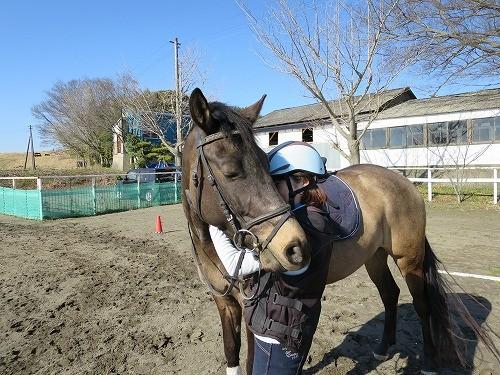 馬と相思相愛