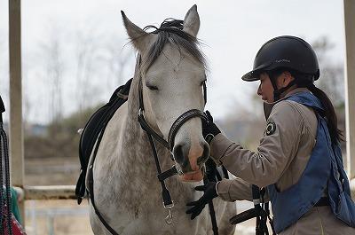 馬に幸せを与える