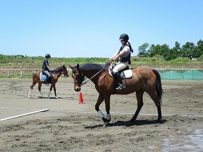 乗馬を学べる環境