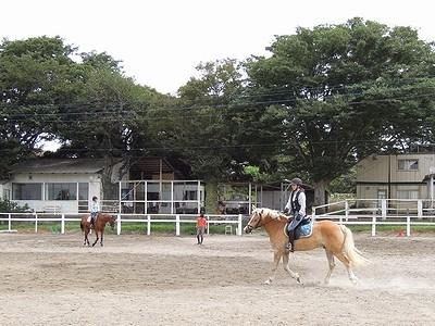 ワンハンドで乗馬の練習