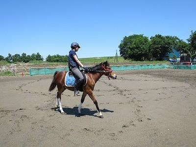 新馬調教 バランスで乗る