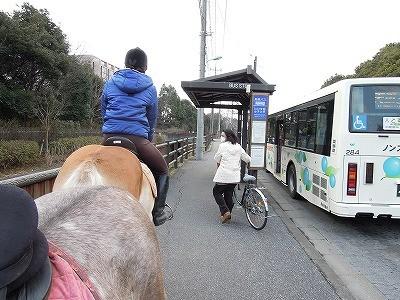 乗馬で川村学園女子大学まで行ってきた♪