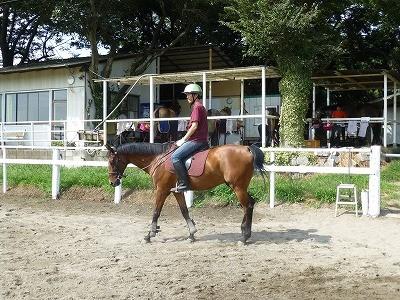 本日の体験乗馬