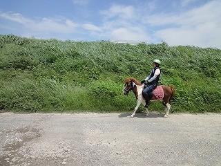 乗馬の楽しみ外乗を体験