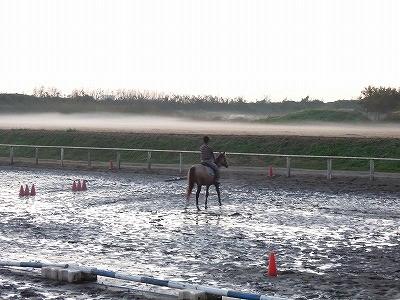 幻想的な乗馬風景