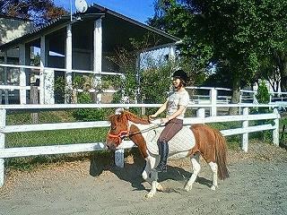 裸馬での乗馬体験してみてね!