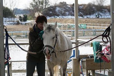 馬と楽しいコミュニケーション