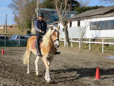 馬との対話
