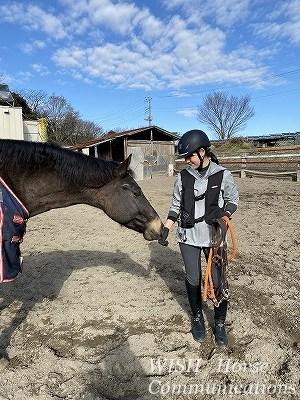 馬の自由意志